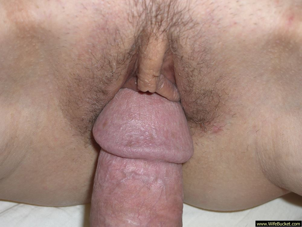 fucking my wifes hairy pussy